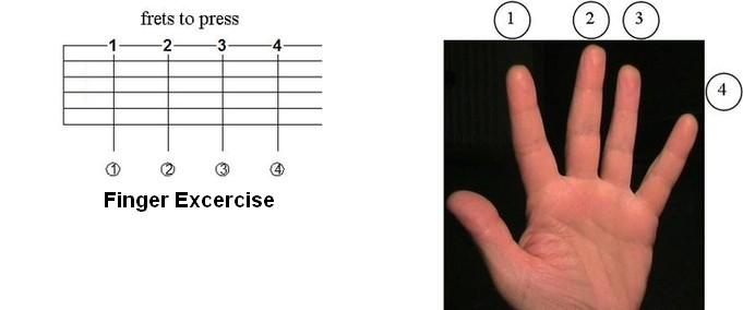Finger Exercise For Guitar Beginners